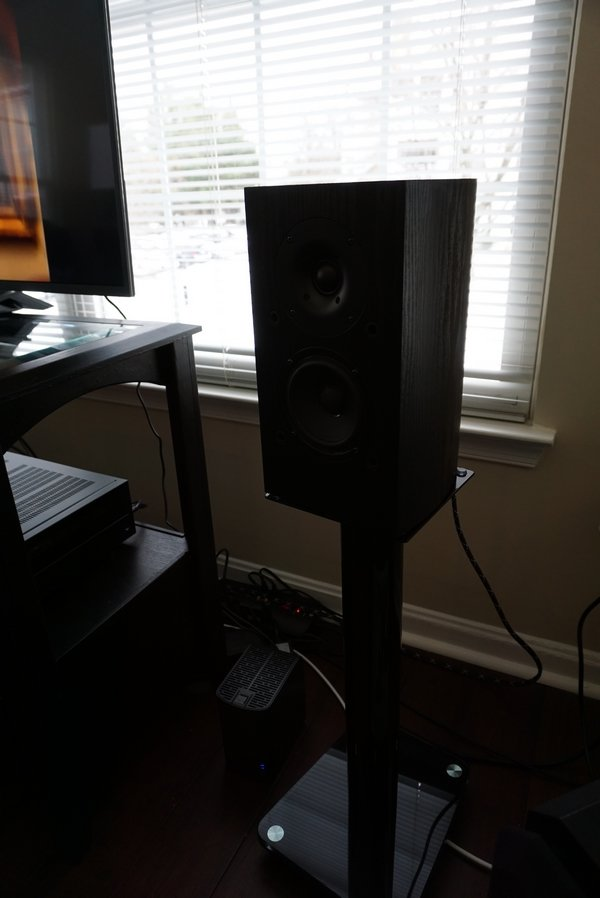 Pioneer Andrew Jones Speakers.JPG